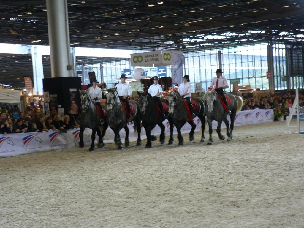 Salon du cheval de paris actualit s - Salon du cheval a mons ...