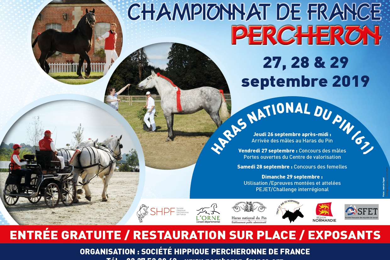 Orne - CHAMPIONNAT DE FRANCE PERCHERON - Haras nat...